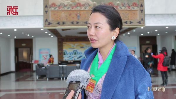 西藏自治区政协十一届三次会议开幕