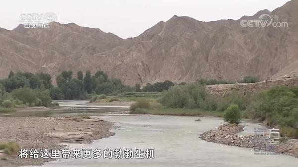 【远方的家】《大好河山》探访祁连山脚下的黑河湿地