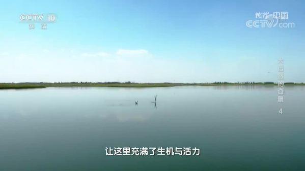 《地理·中国》大自然的奇景