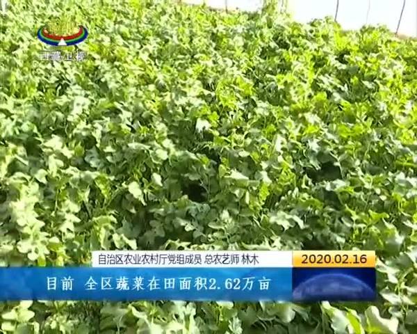 西藏不误农时 一体推进疫情防控与农业生产