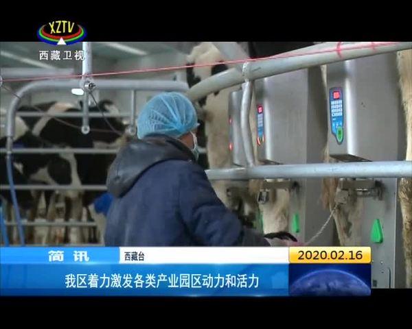 西藏着力激发各类产业园区动力和活力