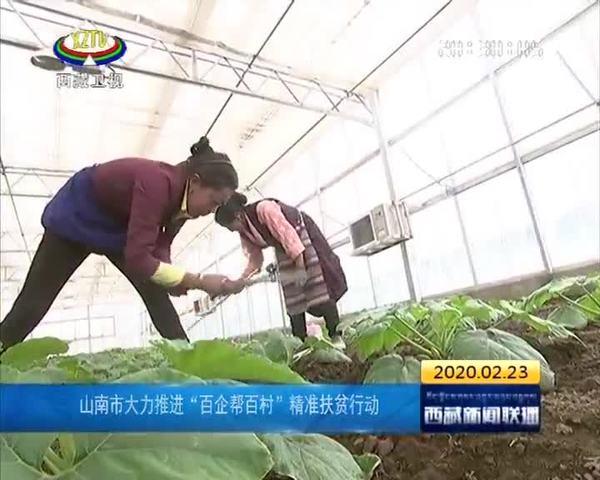 """西藏山南市大力推进""""百企帮百村""""精准扶贫行动"""