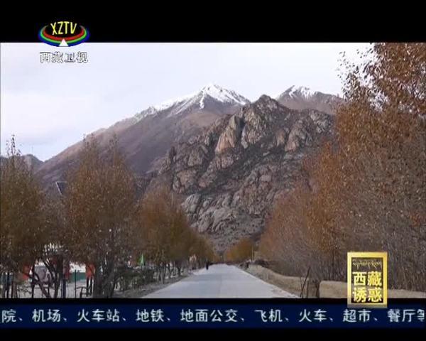 《西藏诱惑》致富火炬传边坝