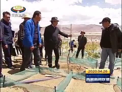 西藏自治区领导调研拉萨市和山南市造林绿化工作