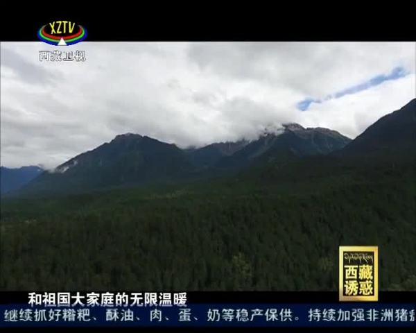 《西藏诱惑》幸福琼林村