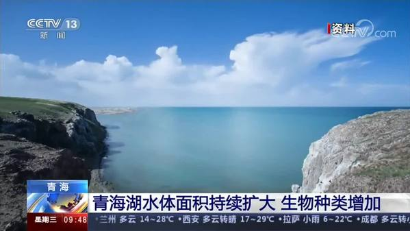 青海湖水体面积持续扩大 生物种类增加