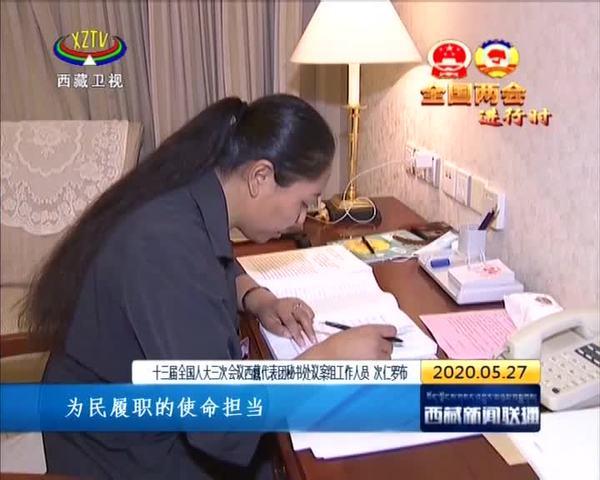 出席十三届全国人大三次会议的西藏代表向大会提交建议9件