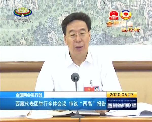 """西藏代表团举行全体会议 审议""""两高""""报告"""