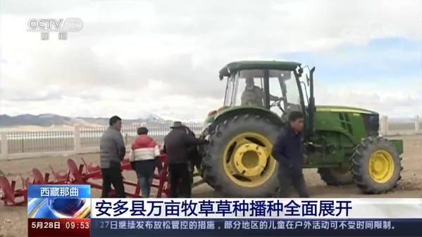 西藏那曲安多县万亩牧草草种播种全面展开