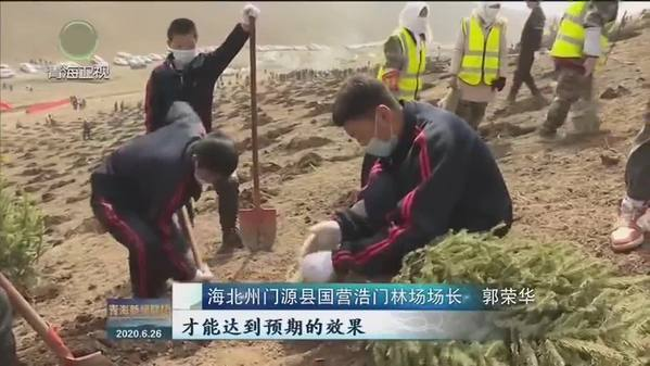 郭荣华:让家乡的山川绿起来了