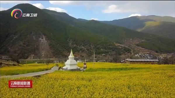 云南迪庆:一步跨千年 雪域高原沧桑巨变