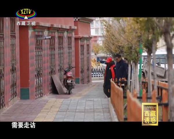 《西藏诱惑》洛隆变身记