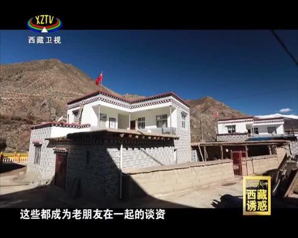 《西藏诱惑》硕督团结情