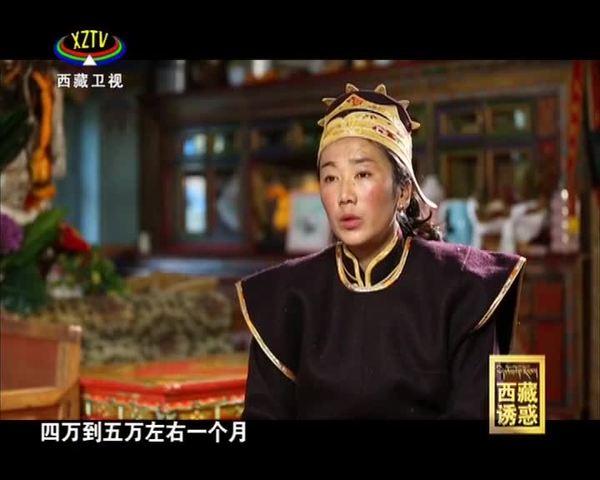 《西藏诱惑》小康路上的幸福村