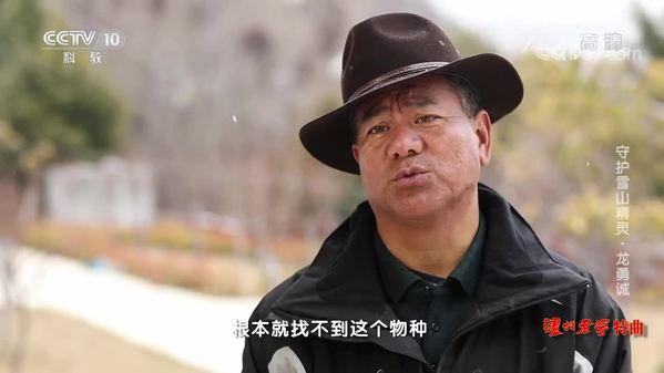 《人物·故事》守护雪山精灵·龙勇诚