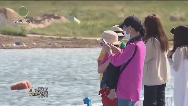 青海湖旅游持续升温