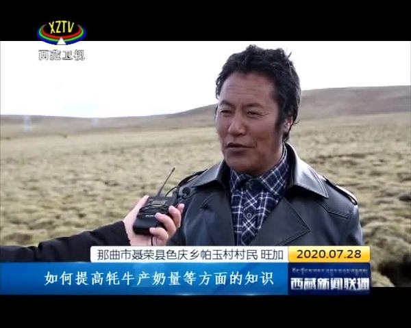 """让科研成果成为万千农家牧户的""""致富宝""""——记西藏自治区农科院畜牧兽医研究所所长研究员巴桑旺堆"""