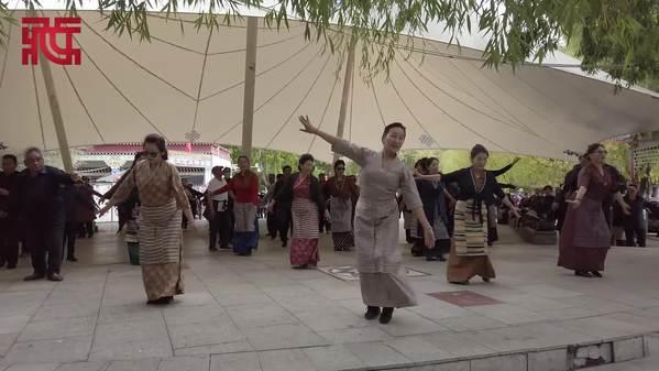 西藏拉萨宗角禄康公园秋日小记