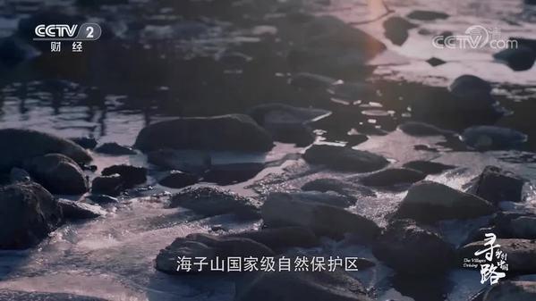 《经济半小时》特别报道:寻路乡村中国·织网
