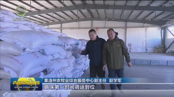 【新春走基层】青海省果洛州:五级饲草储备体系 确保牲畜安全越冬