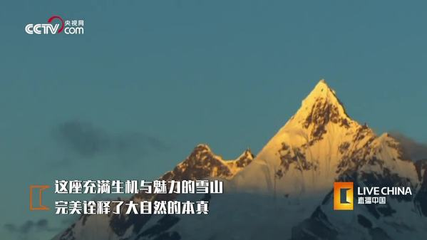 梅里雪山:高寒之巅 生机盎然
