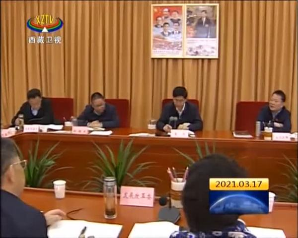 西藏自治区政府召开专题会议研究稳投资促增长工作
