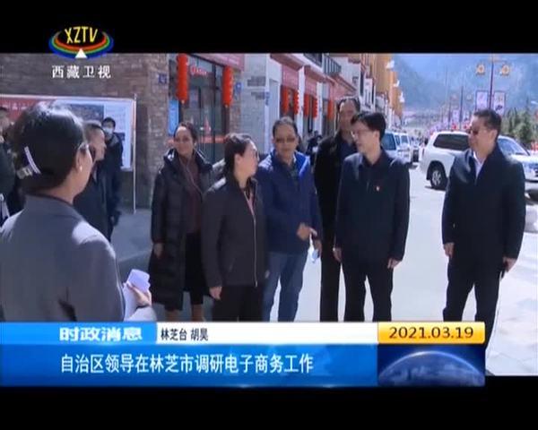 西藏自治区领导在林芝市调研电子商务工作