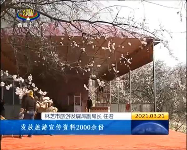 林芝市第十九届桃花旅游文化节将于27日开幕