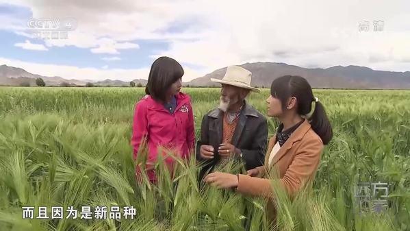 《远方的家》大好河山——西藏的丰饶物产