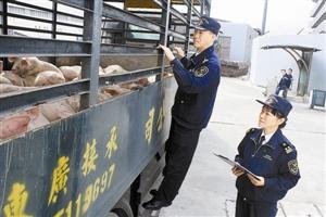 深圳海关出台重大措施促外贸稳增长 支持自贸