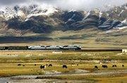 可可西里盐湖面积持续增大 官方加强青藏铁路公路监控