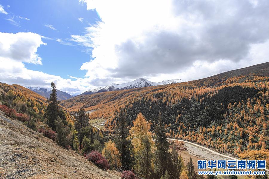 齐建新:把迪庆打造为中国藏区最具特色的国际旅游胜地