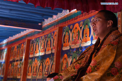 20th anniversary of the enthronement of the 11th Panchen Lama