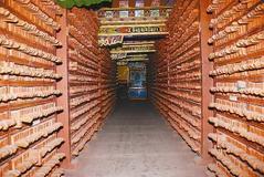Dege Buddhist Sripture Printing House applies for world heritage status