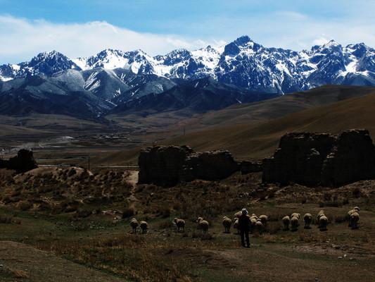 天祝藏族自治县草原管理条例