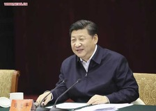 Xi stresses 'green development' along Yangtze River