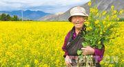 Freiwillige in Tibet