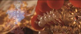 【视频欣赏】《花木兰》——《但愿得二爹娘长寿百年》