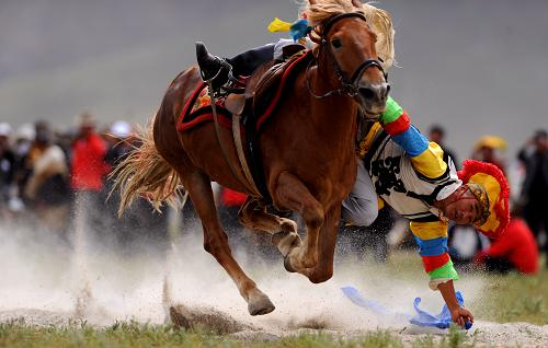5 Tibetan athletics equestrian members selected into national centralized training course