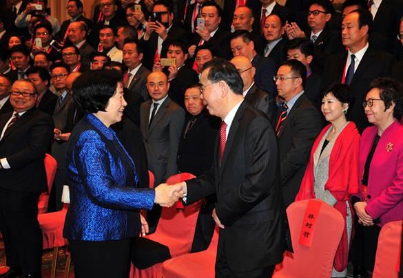 孙春兰会见中国和平统一促进会、中华海外联谊会会议代表