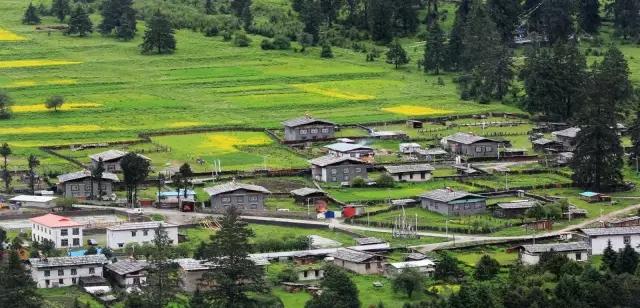 鲁朗小镇:西藏旅游新天堂