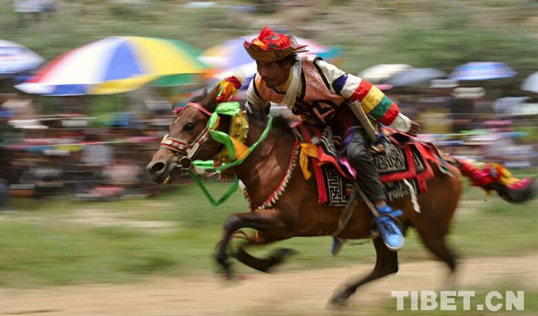 Horseback competition