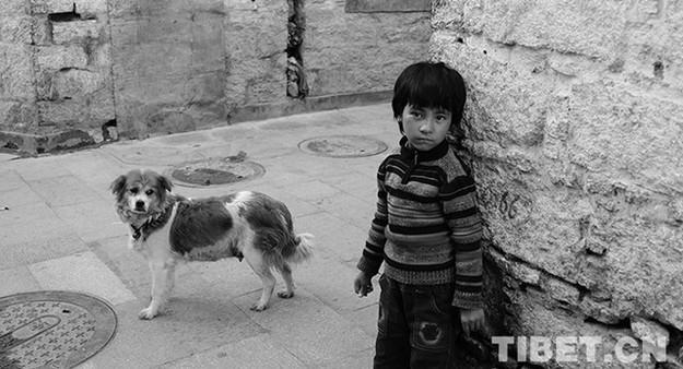 Senior, Kind und Hund (Erzählung)