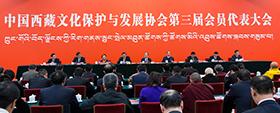 中国西藏文化保护与发展协会