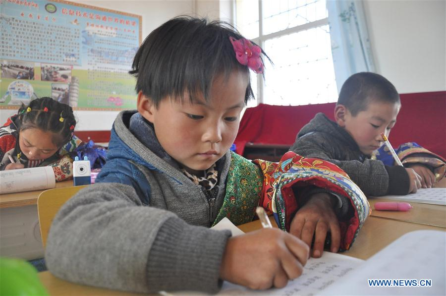 Measures taken to ensure Tibetan children's access to education in NW China