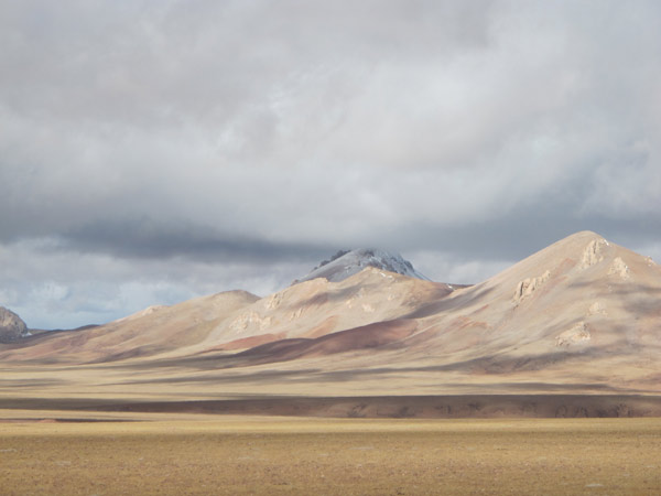 Tibet takes steps to contain grassland degradation