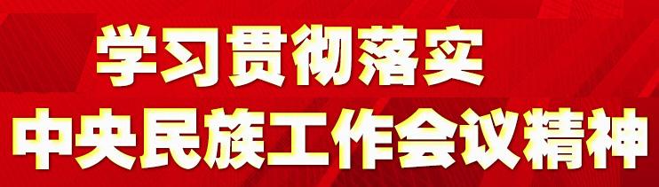 学习贯彻落实中央民族工作会议精神