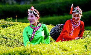 东固畲族乡的盘歌和考歌