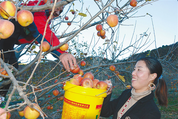 Poverty alleviation projects help the locals in Nyingchi, Tibet