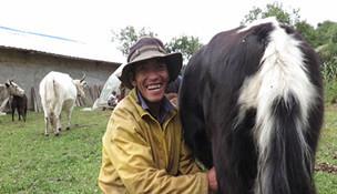 Die Familie Tsering